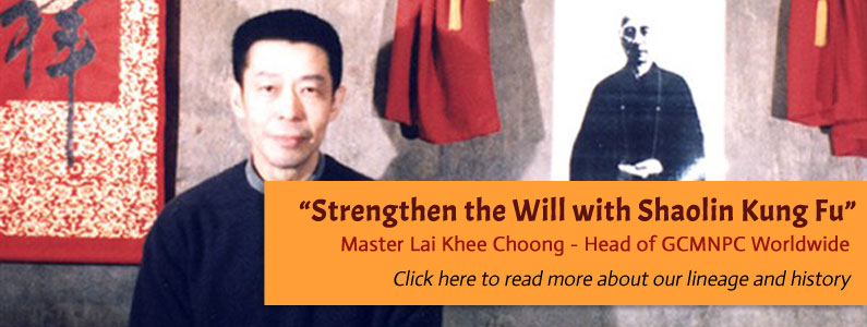 Strenghten the Will with Shaolin Kung Fu - Tai Si Gung Christopher Lai Khee Choong (Head of Nam Pai Chuan)
